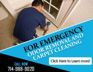 Contact Us | 714-988-9020 | Carpet Cleaning Buena Park, CA